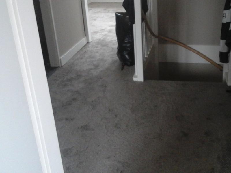 Slaapkamer Met Tapijt : Klus opheusden slaapkamer voorzien van tapijt bunt stoffering